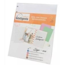 Refil Caderno Inteligente Liso Med(30Fls)Unid - Ref.CIMD3002 Novitate